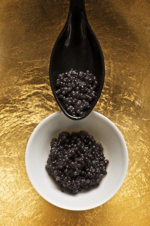 caviar_and_spoon