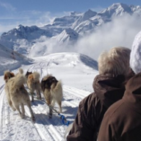 romantic dog sled proposal verbier